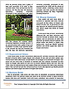 0000081252 Word Templates - Page 4