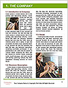 0000081253 Word Template - Page 3