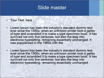 0000081256 PowerPoint Templates - Slide 2