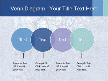 0000081256 PowerPoint Templates - Slide 32