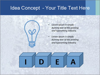 0000081256 PowerPoint Template - Slide 80