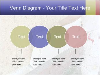 0000081259 PowerPoint Templates - Slide 32