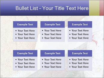 0000081259 PowerPoint Templates - Slide 56