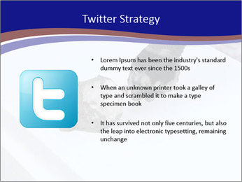 0000081260 PowerPoint Template - Slide 9