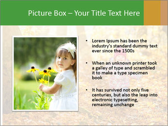 0000081262 PowerPoint Template - Slide 13
