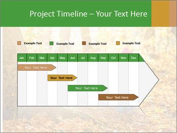 0000081262 PowerPoint Templates - Slide 25