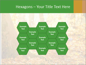 0000081262 PowerPoint Templates - Slide 44
