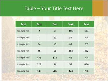 0000081262 PowerPoint Templates - Slide 55