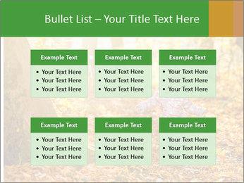 0000081262 PowerPoint Templates - Slide 56