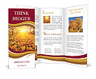 0000081263 Brochure Template