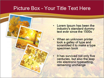 0000081263 PowerPoint Templates - Slide 17