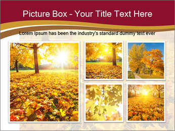 0000081263 PowerPoint Templates - Slide 19