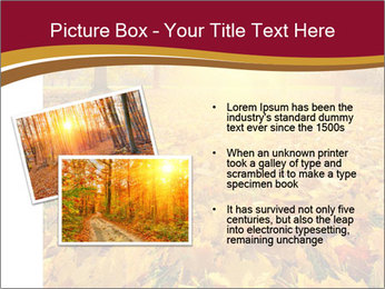 0000081263 PowerPoint Templates - Slide 20