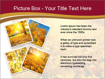 0000081263 PowerPoint Templates - Slide 23
