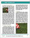 0000081264 Word Template - Page 3