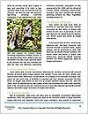 0000081269 Word Templates - Page 4