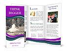0000081272 Brochure Template