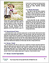 0000081272 Word Templates - Page 4