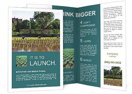 0000081280 Brochure Templates