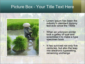 0000081280 PowerPoint Template - Slide 13