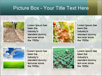 0000081280 PowerPoint Template - Slide 14