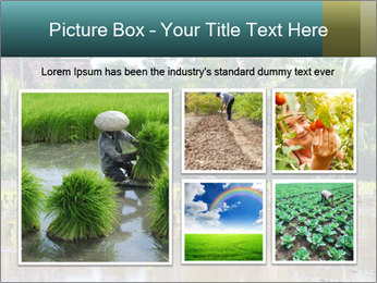 0000081280 PowerPoint Template - Slide 19