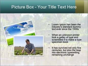 0000081280 PowerPoint Template - Slide 20