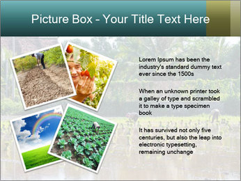 0000081280 PowerPoint Template - Slide 23
