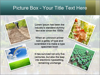 0000081280 PowerPoint Template - Slide 24