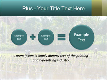 0000081280 PowerPoint Template - Slide 75