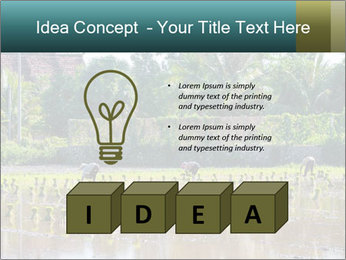 0000081280 PowerPoint Template - Slide 80