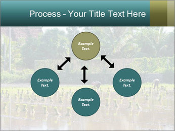 0000081280 PowerPoint Template - Slide 91