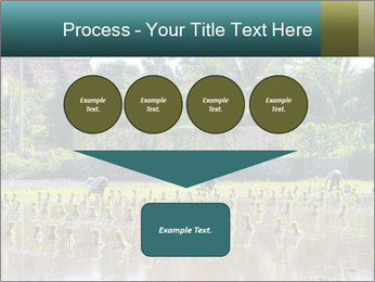 0000081280 PowerPoint Template - Slide 93