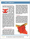 0000081282 Word Templates - Page 3
