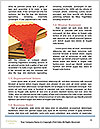 0000081282 Word Templates - Page 4