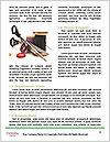 0000081289 Word Templates - Page 4