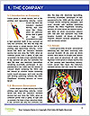 0000081291 Word Template - Page 3