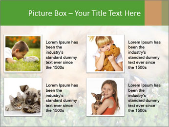 0000081292 PowerPoint Template - Slide 14