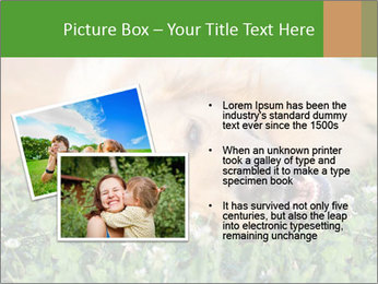 0000081292 PowerPoint Template - Slide 20