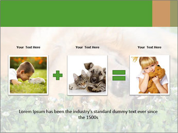 0000081292 PowerPoint Template - Slide 22