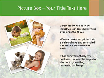 0000081292 PowerPoint Template - Slide 23