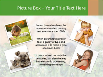 0000081292 PowerPoint Template - Slide 24