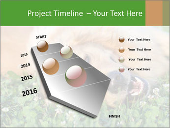 0000081292 PowerPoint Template - Slide 26