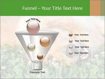 0000081292 PowerPoint Template - Slide 63
