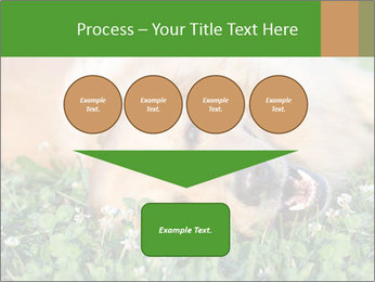 0000081292 PowerPoint Template - Slide 93