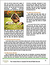 0000081292 Word Template - Page 4