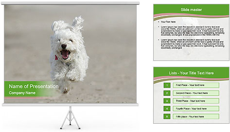 0000081294 PowerPoint Template