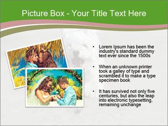 0000081294 PowerPoint Templates - Slide 20