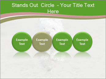 0000081294 PowerPoint Templates - Slide 76