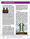 0000081297 Word Template - Page 3